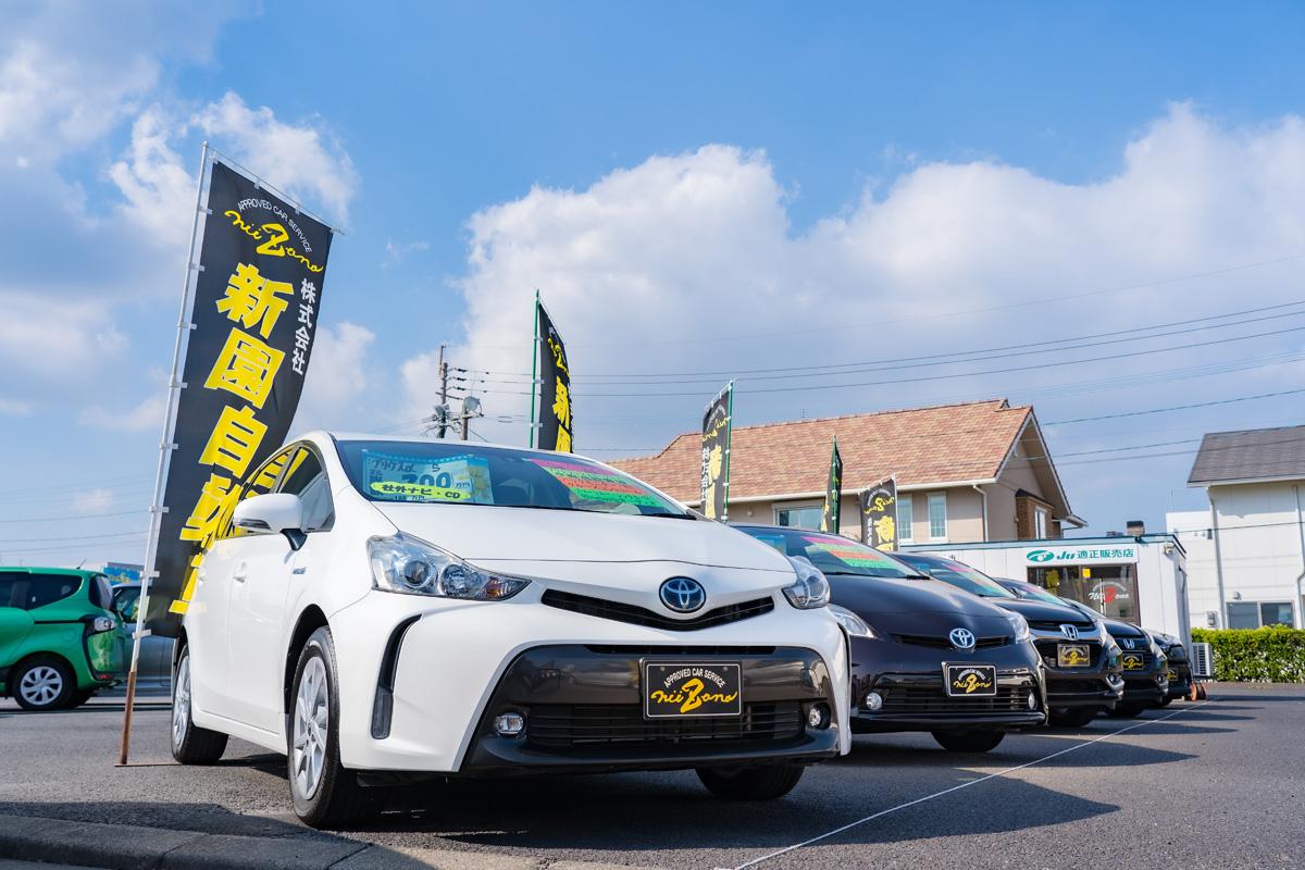 新園自動車 JUカーパーク店